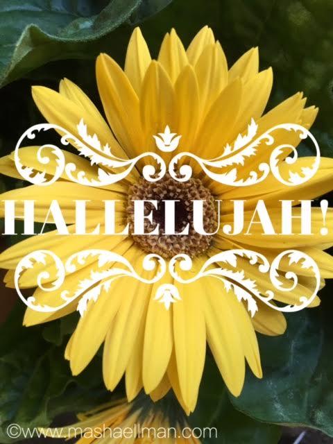 yellow-hallelujah