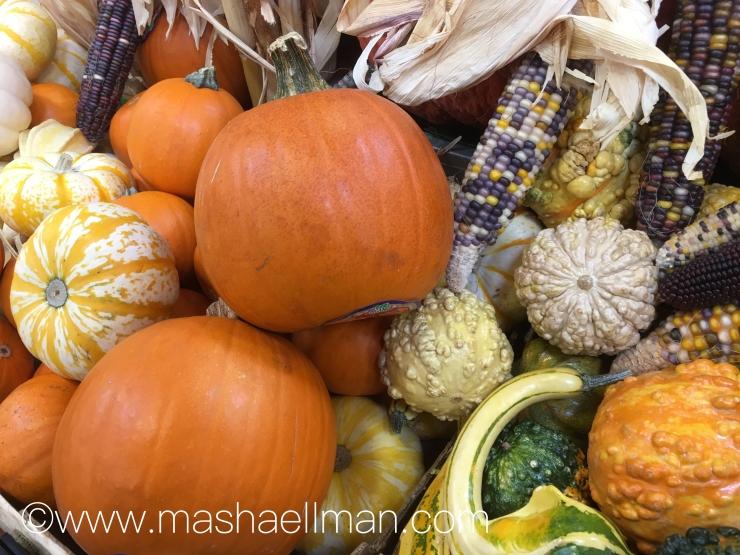pumpkin-corn