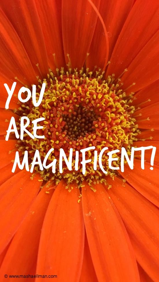 Magnificent2